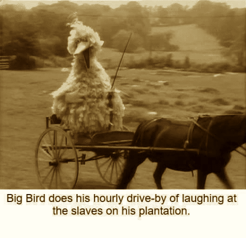 big-bird-does-his-hourly-drive-by-of-laughing-at-the-6997002